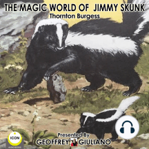 The Magic World Of Jimmy Skunk