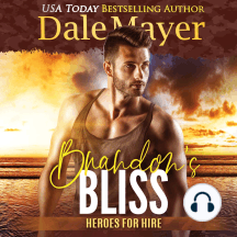 Brandon's Bliss: Book 14: Heroes For Hire