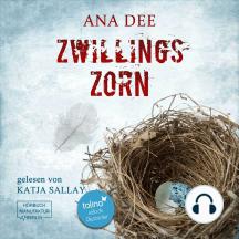 Zwillingszorn - Privatdetektiv Thomas Fields, Band 2