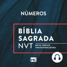 Bíblia NVT - Números