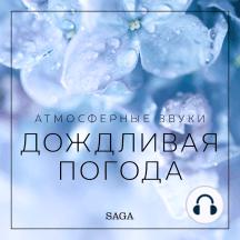 Атмосферные звуки – Дождливая погода: Saga Sounds