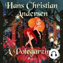 A Polegarzinha: Hans Christian Andersen's Stories