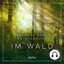 Klänge der Entspannung - Im Wald