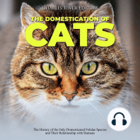 Domestication of Cats, The