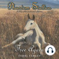 Phantom Stallion