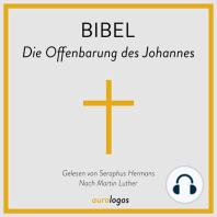 Bibel - Die Offenbarung des Johannes