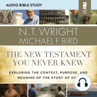 New Testament You Never Knew, The