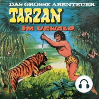 Tarzan - Das große Abenteuer, Folge 1
