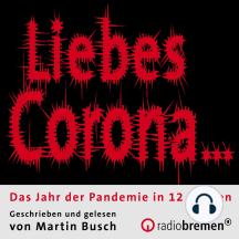 Liebes Corona…: Das Jahr der Pandemie in 12 Briefen
