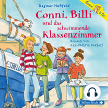 Conni, Billi und das schwimmende Klassenzimmer (Conni & Co 17)