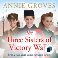 The District Nurse