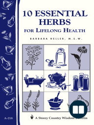 10 Essential Herbs for Lifelong Health