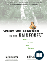 What We Learned in the Rainforest