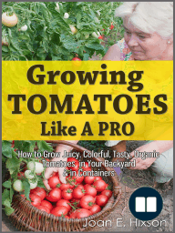 Growing Tomatoes Like A Pro