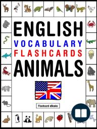 English Vocabulary Flashcards