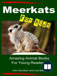 Meerkats For Kids