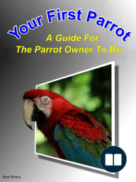 Your First Parrot