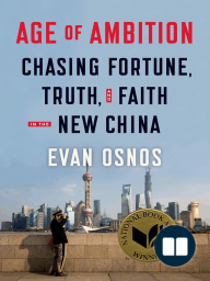 Age of Ambition