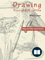 Drawing Florida Wildlife