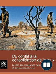 From Conflict to Peacebuilding