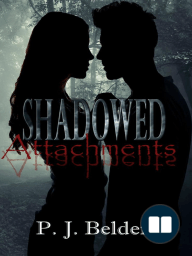 Shadowed Attachments