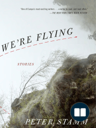 We're Flying (Stories) by Peter Stamm - Excerpt