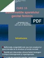 CURS 15 - Malformatiile Aparatului Genital Feminin