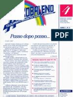 Arcobaleno - N° 4 Ottobre 1991