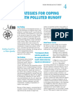 Strategies for Coping With Polluted Runoff