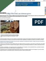 Código Florestal, um sintoma grave — Instituto Ciência Hoje