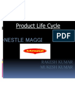 38748673 Product Life Cycle of Maggi