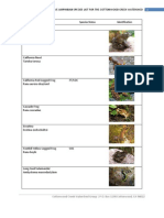 Native Amphibian Species List for the Cottonwood Creek Watershed