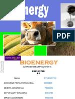 Final Bioenergy Presentation (1)