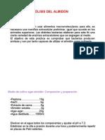 p17 (1)