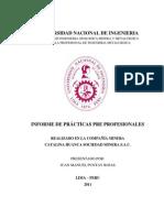 Informe Practica Catalina Huanca-Juan Puntay