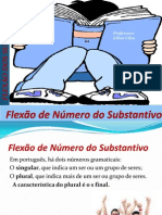 Flexão de Número do Substantivo