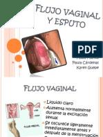 Flujo Vaginal y Esputo