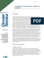 recomendações técnicas para o cultivo do abacaxizeiro