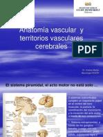 Anatomia Vascular y Territorios Vasculares Cerebrales (1)
