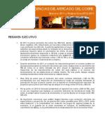 INFORME TENDENCIAS DEL MERCADO DEL COBRE 2012-2013