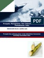 Prospek, Manajemen, Dan Teknologi Produksi Perkebunan