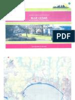 Blue Cedar, JSY