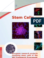 Stemcell Eu Research Projects
