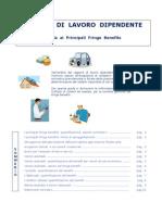 Guida Fringe Benefits