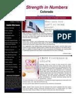 SIN Newsletter 4