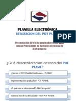 Pdt+Plame+Ps4ta+Categ