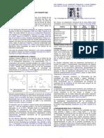 Psa0 Mezcla de Extractos de Lepidium Meyenii Rojo Info