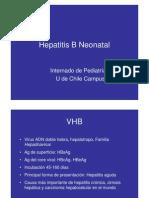 Hepatitis B Neonatal