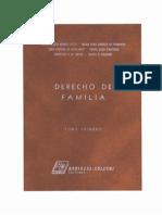 Derecho de Familia Tomo i PDF