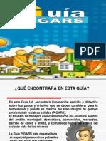 Guía PIGARS.pdf.pdf